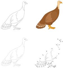 Cartoon turkey. Vector illustration. Dot to dot game for kids