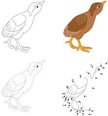 Cartoon poult. Vector illustration. Dot to dot game for kids