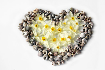 Heart of seashells and flowers