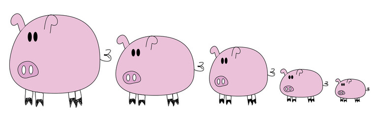 5 pigs family