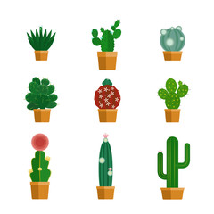 Cactus icons in flat style. Tropical flowers in flowerpots. Vector illustration