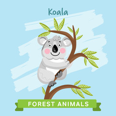 Koala vector. Wild and forest animals. Cartoon characters illustration. Funny Animal.