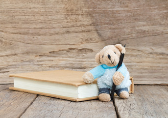Teddy Bear toy with black color pencil on wood background