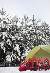 Tent in the winter forest in the snow with snowshoes and red backpack.