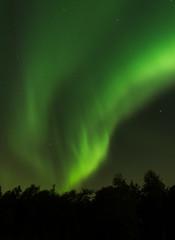Aurora over Volda