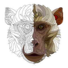 Monkey half-finished hand drawn portrait. 2016 year symbol. Revived picture.