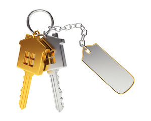 Bunch of golden and silver house-shape keys with blank label isolated on white background