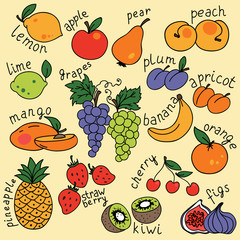 Vector set with fruits icons