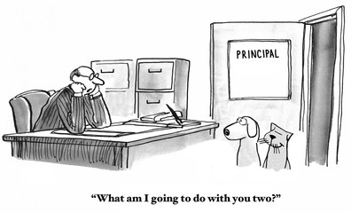 Education cartoon of cat and dog students who are regularly sent to the principal.