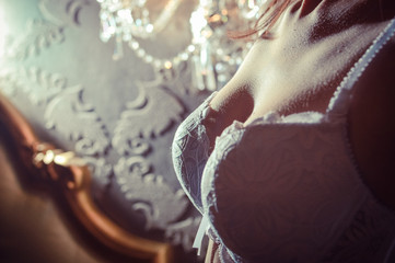 Closeup picture of beautiful female breasts in sexy lingerie on copy space background