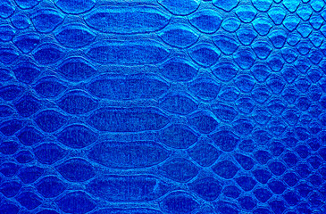 Wall Mural - Snake skin, can use as background