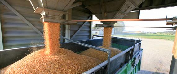 Silo à grain et transport camion du blé