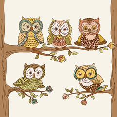 Set of cute hand drawn owls. Vector illustration