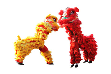 chinese traditional lion dance isolated on white background