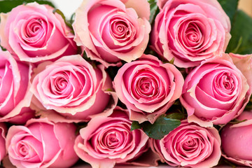 Bouquet of beautiful pink roses