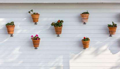Flowerpots Hung on an Exterior Wall