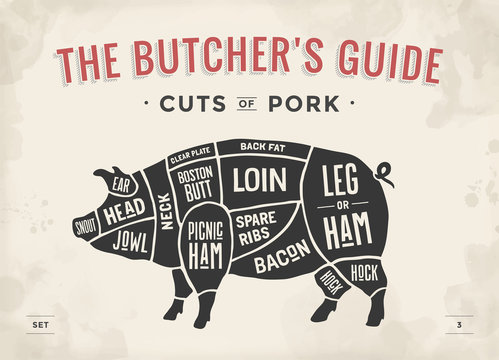 Cut of meat set. Poster Butcher diagram, scheme and guide - Pork. Vintage typographic hand-drawn. Vector illustration.