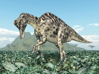 Dinosaur Velafrons