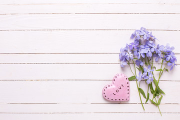 Background with  blue flowers and  pink decorative heart on whit