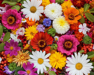 Flower background for a congratulation, top view.
