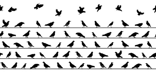 Birds Sitting on Power Lines. Seamless Pattern. Vector Illustrat
