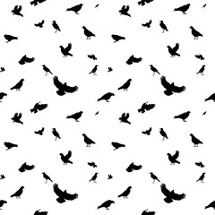 Birds Flying in Air. Seamless Pattern. Vector Illustration.