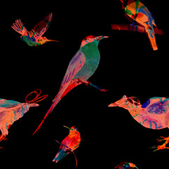 Seamless pattern with birds of paradise. Hand painted watercolor exotic birds. Blended silhouettes. Isolated on black background. Fabric texture.