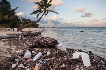Plastic Pollution on Caribbean Beach