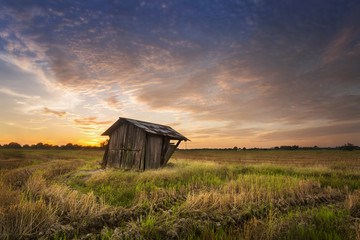 Old wooden cottage in paddy field