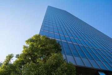 高層ビルと緑