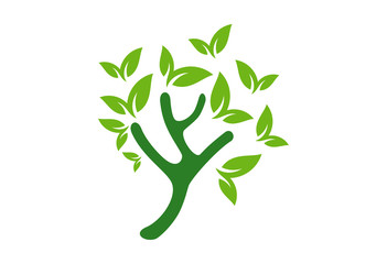 Tree Logo Vector Design