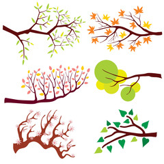 Wall Mural - Tree branch with leaves and flowers. Nature flower floral, summer or spring green plant, blossom season. Vector illustration set