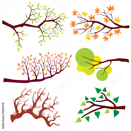 Wall mural Tree branch with leaves and flowers. Nature flower floral, summer or spring green plant, blossom season. Vector illustration set