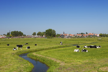 Dutch country landscape on a clear sunny day