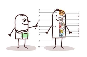 cartoon male anatomy lesson