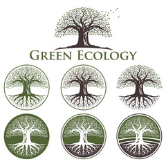 Ecology Oak Style - Old Tree Logo Collection