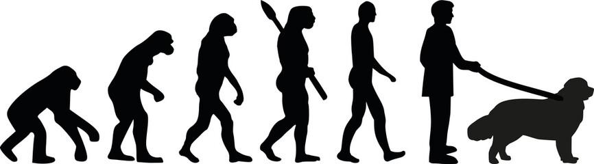 Newfoundland evolution