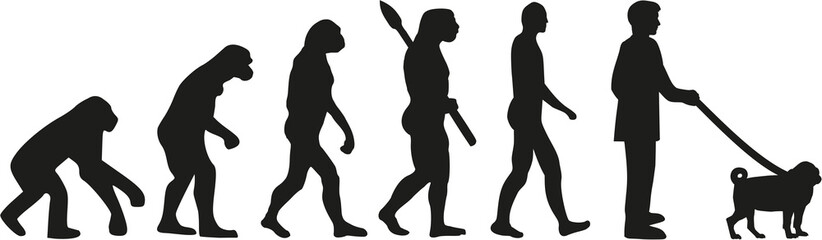 Pug evolution