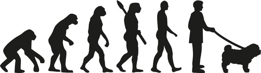 Shar pei dog owner evolution
