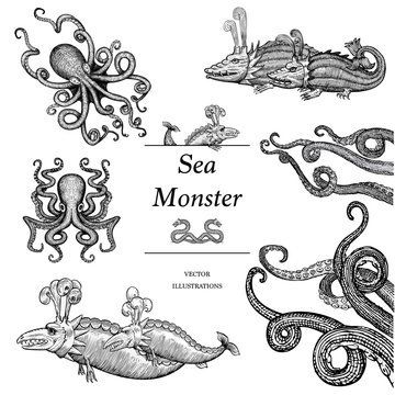 Hand Drawn Sea Monster set