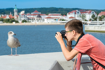Young boy taking picture of seagull on Baltic sea.