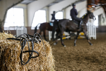 Horse equipment and dressage