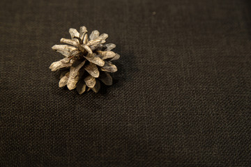 White Fir Cones On Cloth Background With Copy Space Or Your Text.