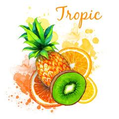 Watercolor tropic illustration fruit set with splash