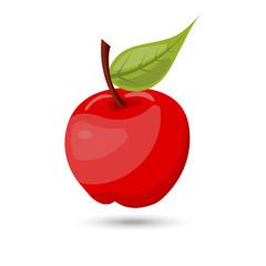 Single vector apple on white background