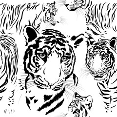 seamless pattern background tiger skins