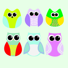 Cartoon owls colorful beautiful bright