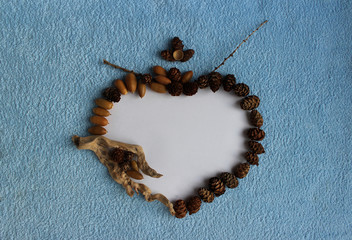 A heart frame of larch cones, acorns and dry sticks on a blue an