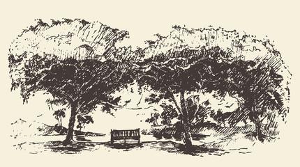 Beautiful romantic tree bench drawn vector sketch