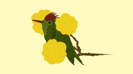 Ilustración de una ave pequeña